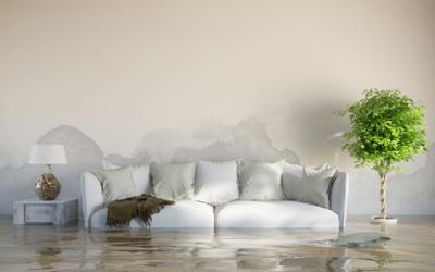 Cúanto cuesta las reparaciones  por daños causados por el agua